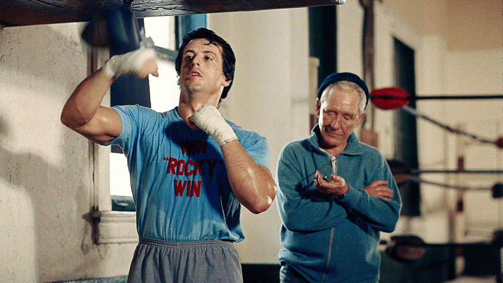 Small business SEO: You might be Rocky but you still need a coach!